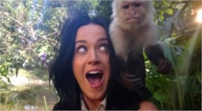 Katy Perry behind the photo shoot scene with monkey