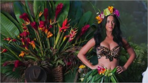 Katy Perry hot  scene from roar music video