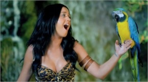 Katy Perry with behind scene with parrot in roar music
