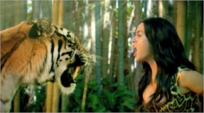 Katy Perry with behind scene with tiger in roar music
