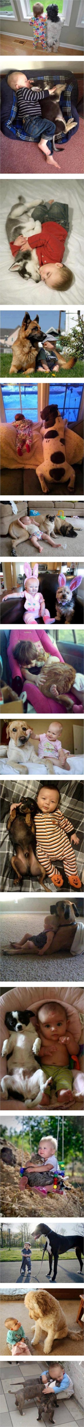 kids_and_pets