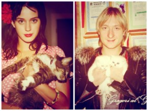 Kucing katy perry THE REAL KATYCATS and Evgeni Plushenko with their cats