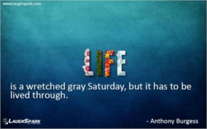 Life is a wretched Gray Saturday - Weekend Quotes