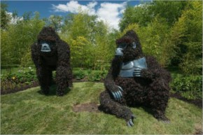 Massive Hordicultural Scaulptures In Montreal DesignBoom Gorillas At  Risk Presented By Uganda