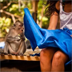 Monkey wants to check what is she hiding