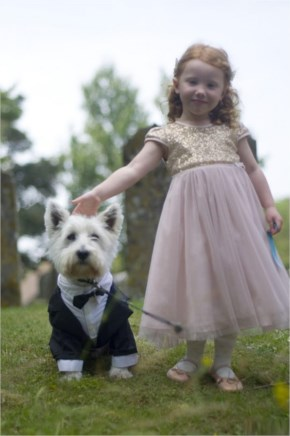 My Brother Got Married Today…My Dog However Stole The Limelight