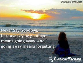Never Say Goodbye  | Quotes images