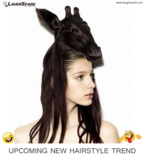 New Hairstyle Trend