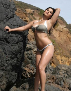 Sexy Sunny Leone Hot And Sexy Curve Body