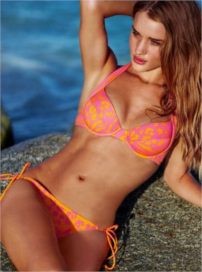 15+ Smoky Hot Pictures Of  Rosie Huntington Whiteley