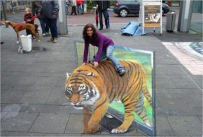 The Beautiful 3D Chalk Art Of Julian Beever...Funny Picture