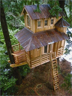 These Are The Most Amazing Cool Tree Houses Ever