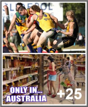 This happens only in Australia (25 photos)