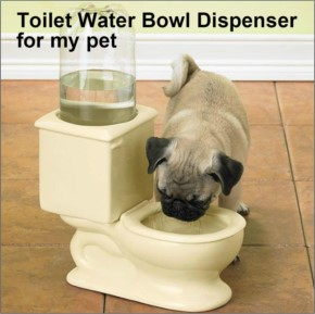Toilet Water Bowl Dispenser for my pet