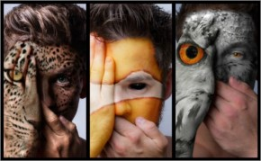 Top 10 Devin Mitchell Photo manipulations with Faces Of The Wild animals