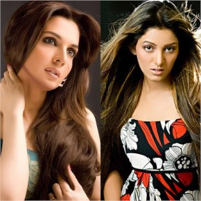 Top 10 Most Beautiful Pakistani Actresses In 2014