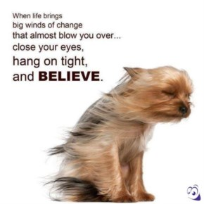 When life brings big winds of change then believe yourself