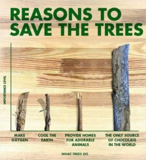 Why save trees?
