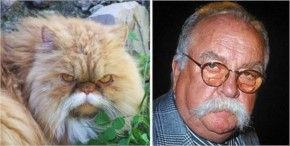 Wilfred Brimley and Kitty have been Reunited