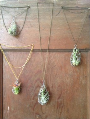 Wire-Wrapped Air Plant Necklace