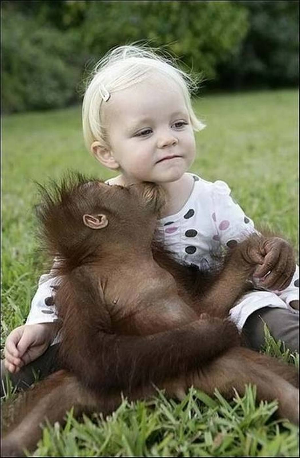 best friends cute baby girl and baby monkey