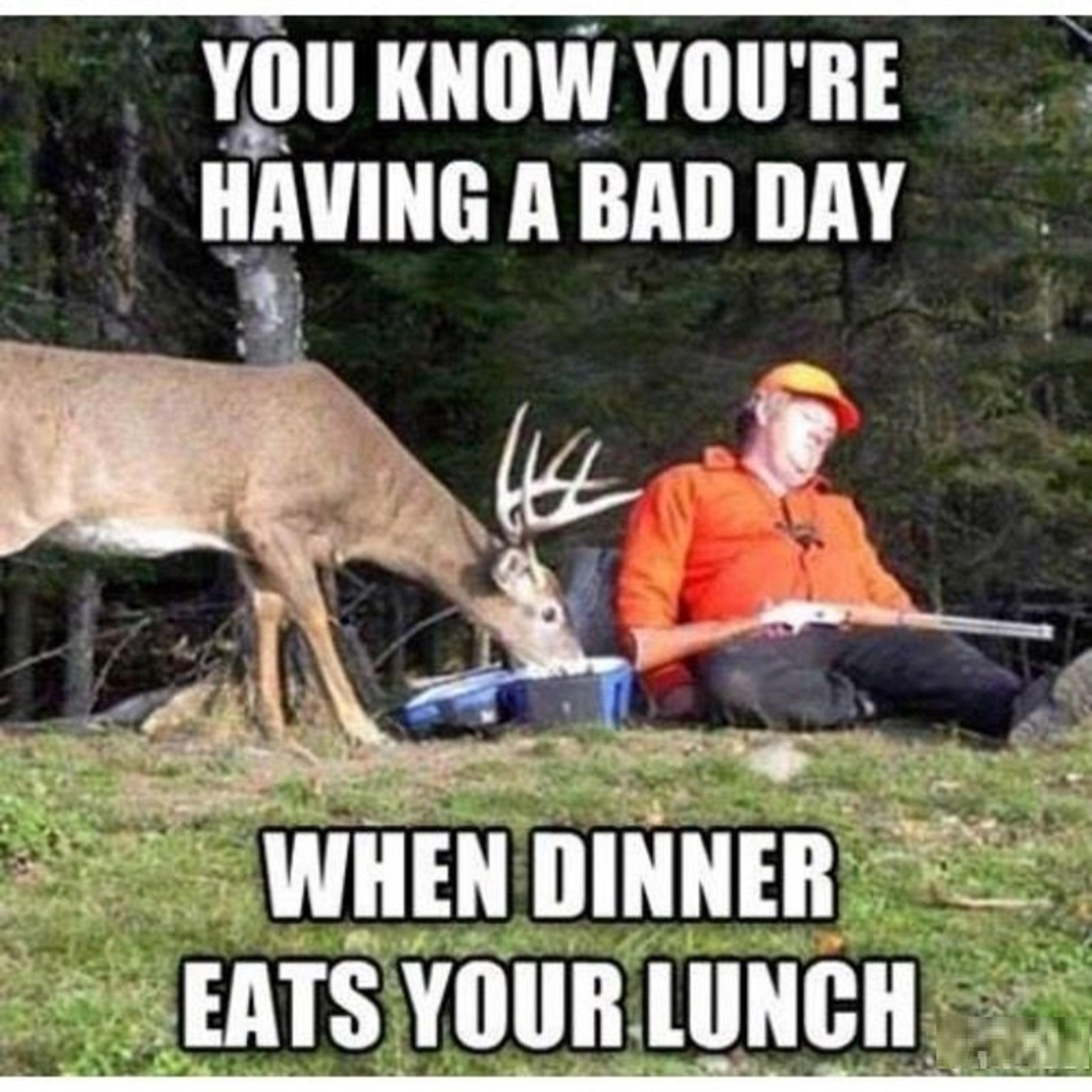 deer hunting memes - photo #29