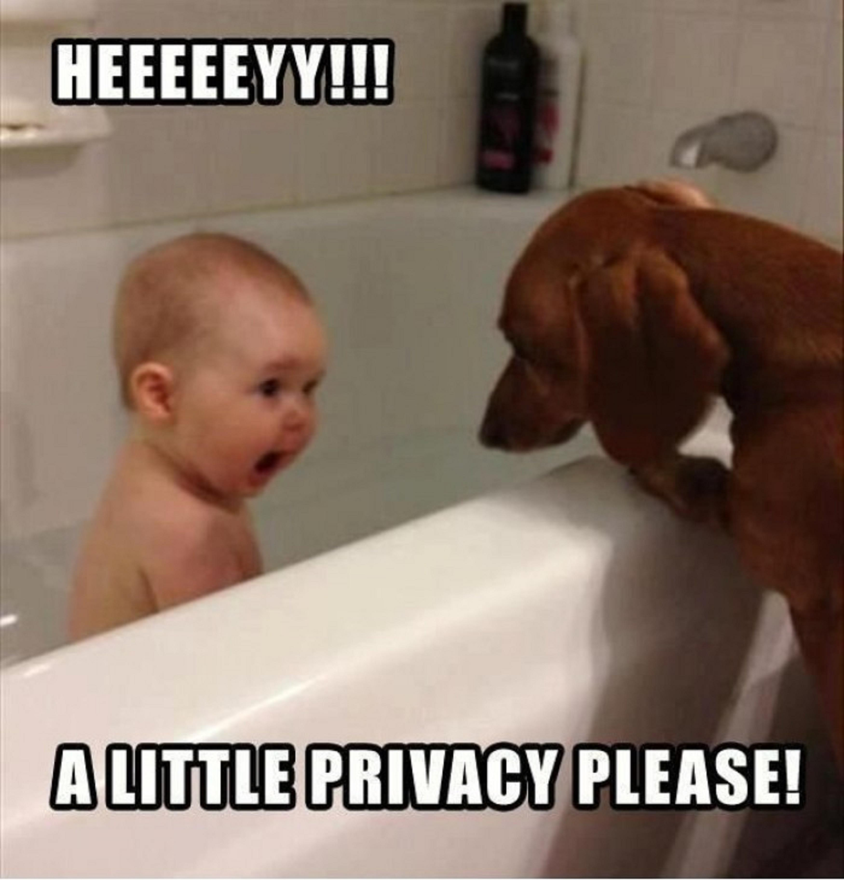 Funny Pictures For Bathroom: Funny Kids Taking A Bath With Dog