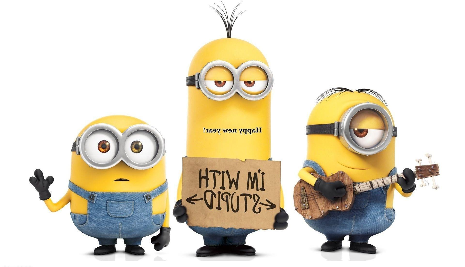 Funny Minions With I M Stupid Face