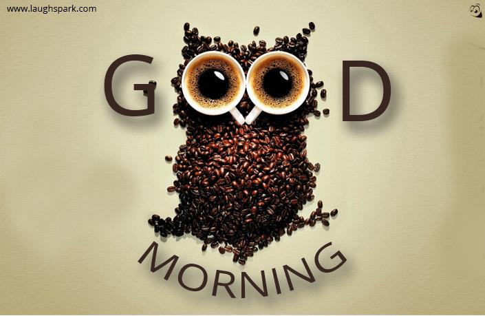 Owl Made of Coffee Beans | Good Morning Image