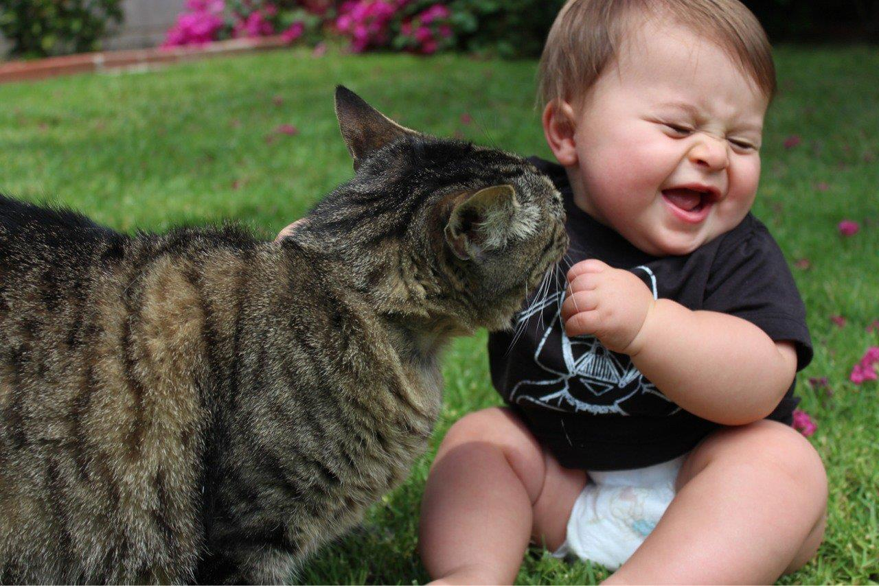 so cute baby playing with cat